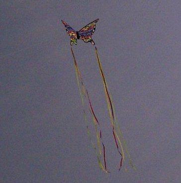 I love to fly my kites on the beach!